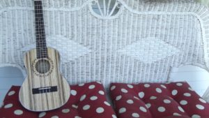 Добрые песни на укулеле