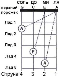 Схема настройки укулеле